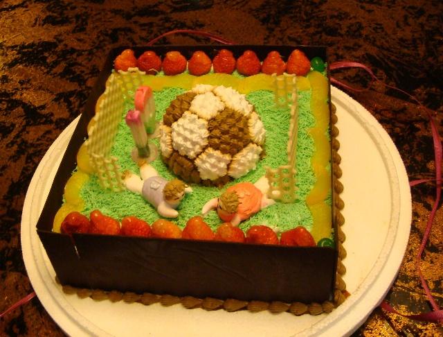 晚上的生日蛋糕(可是宁宁精心挑选的他的最爱---足球场蛋糕!)图片