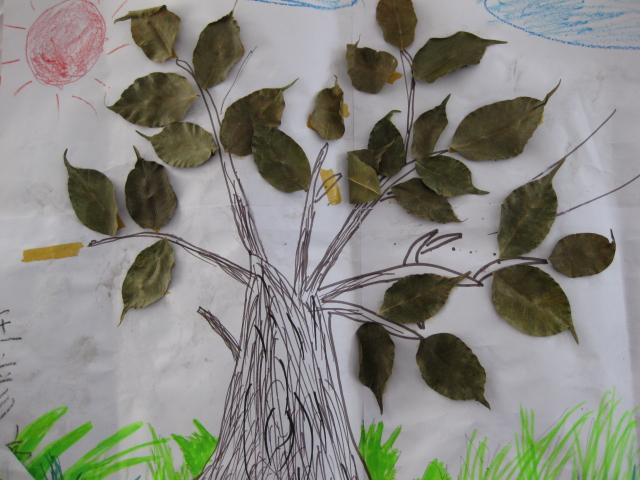 树叶创意画-文山湖畔-搜狐博客图片