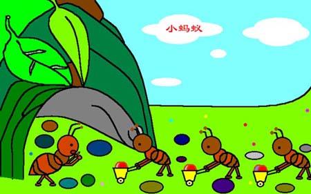 蚂蚁&甲壳虫鹦鹉嘴巴为什么这样图片