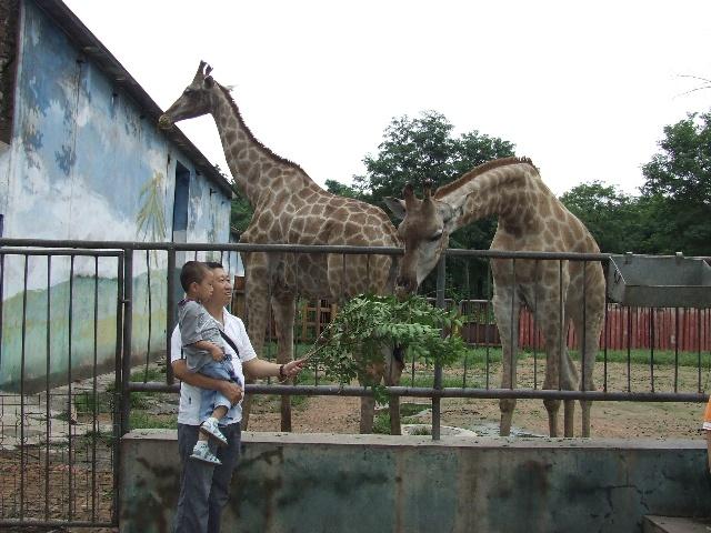 大城山动物园 - 可爱宝贝博客圈 - 焦点房地产 - 搜狐