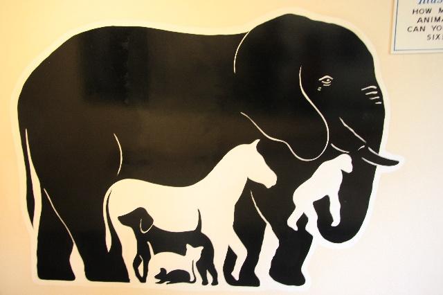 简单动物黑白画大全