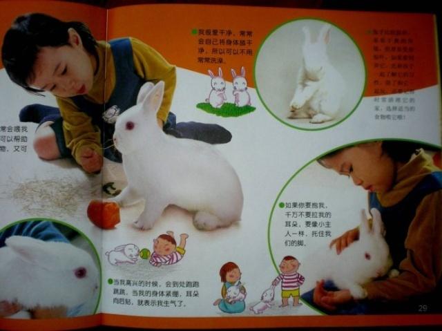 亲子手工:小动物小制作 请家长收集彩色纸,塑料袋,信封,图画纸等材料
