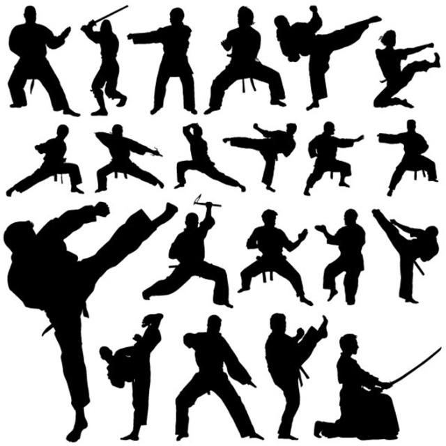 martial arts introduction